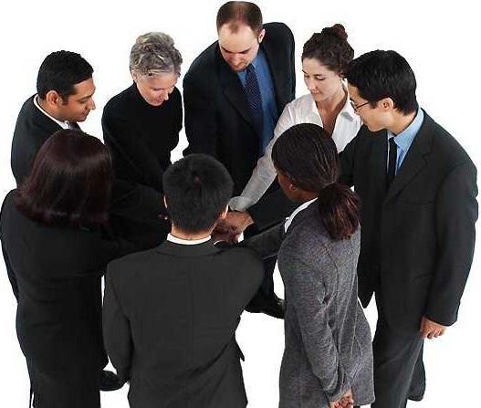 Establecer roles, funciones y tareas